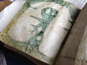 La Mappa Mundi d'Albi - le monde d'hier