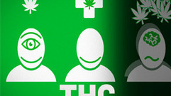 Cropped_thumb_ddc_cannabis