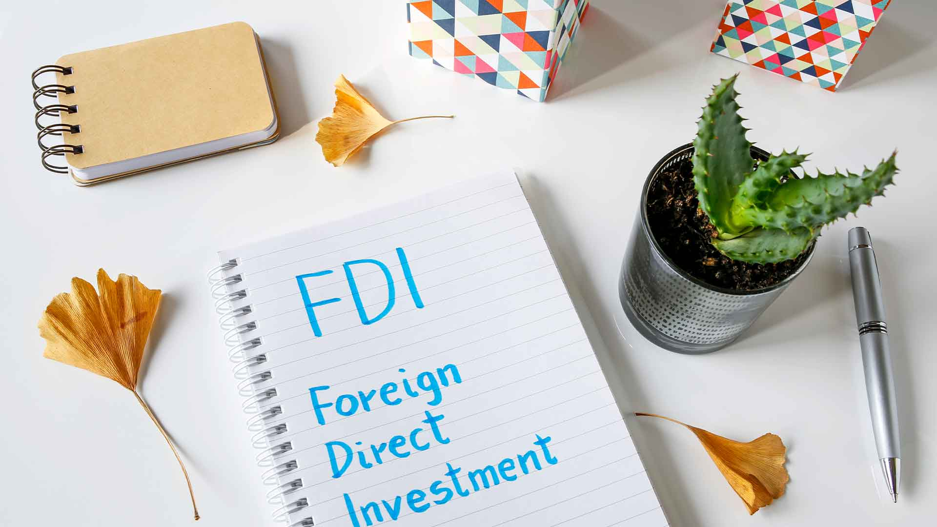 Foreign Direct Investment (FDI) – Options in India