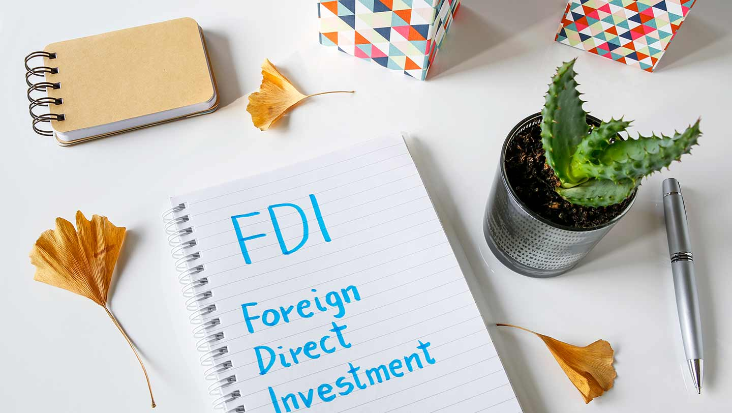 Foreign Investment in India - FDI