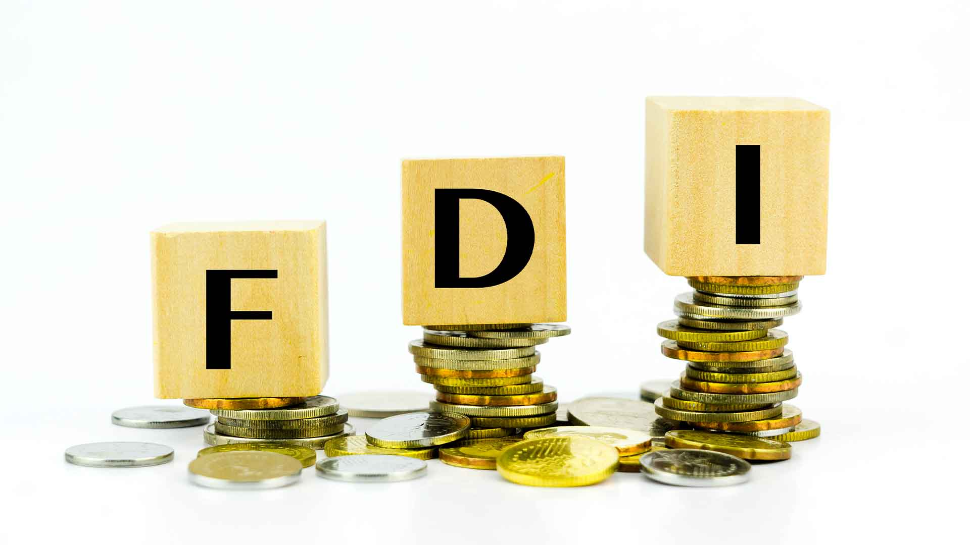 Foreign Direct Investment (FDI) in India : Limited Company