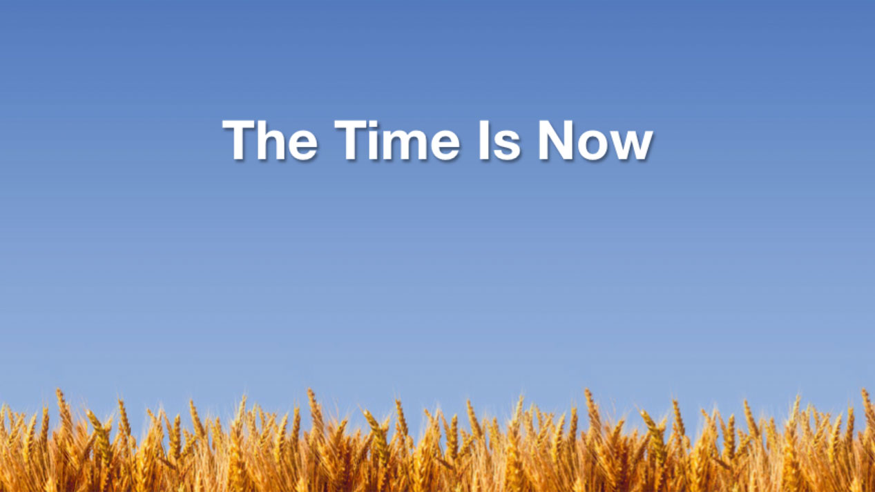 The time is now images
