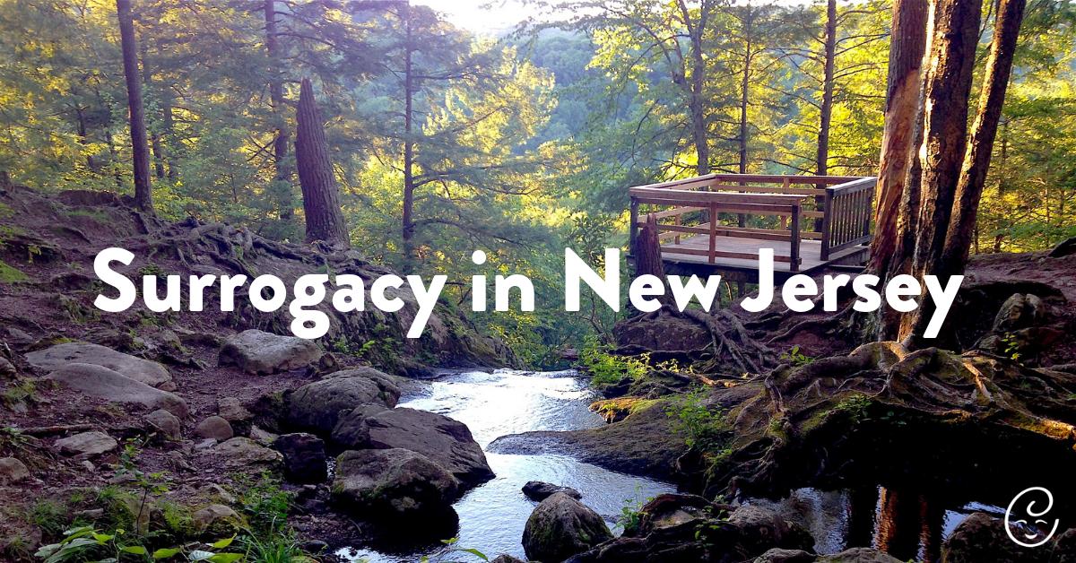 Surrogacy New Jersey