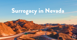 Image of Becoming a Surrogate in Nevada: Everything You Need to Know