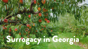 Image of Becoming a Surrogate in Georgia: Everything You Need to Know