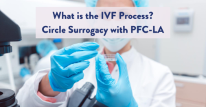 Image of IVF Process – How Does It Break Down?