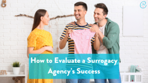 Image of How To Evaluate a Surrogacy Agency's Success