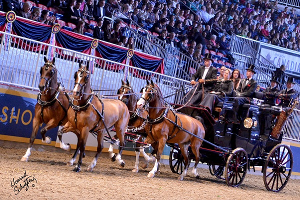 Royal Agricultural Winter Fair-Annual fair begins