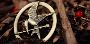 What PR Pros Can Learn from The Hunger Games