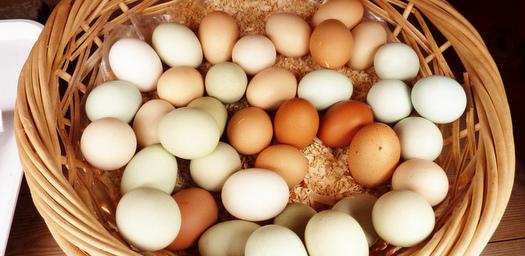 Eggs-PR