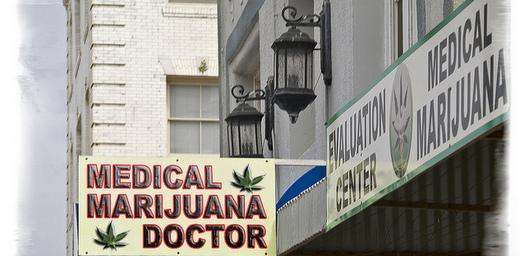 Medical-Marijuana-Distributor