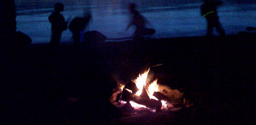 Campfire-Survivor
