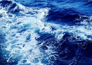 Navigating the Waters of Client Testimonials