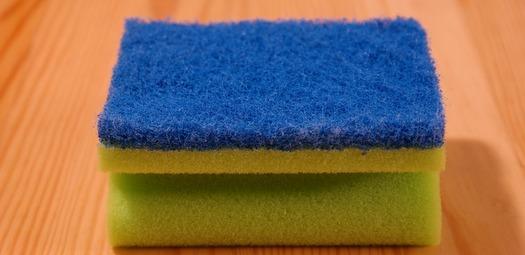 PR-Sponge