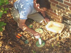 Image 2   Veganix Exterminators
