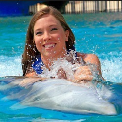 Image 3 | Oahu Swim with Dolphins Tour & Ticket