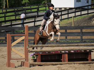 Image 4 | The Clover Stables
