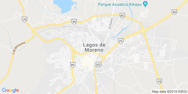 Mapa de LAGOS DE MORENO