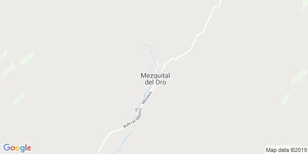 Mapa de MEZQUITAL DEL ORO