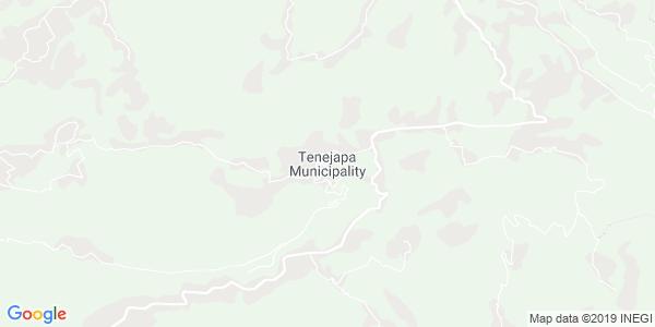 Mapa de TENEJAPA