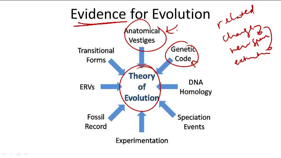 Evidence for Evolution - Overview