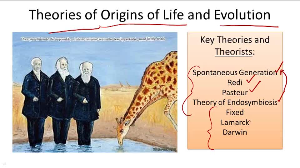 Theories of Origins of Life and Evolution - Overview