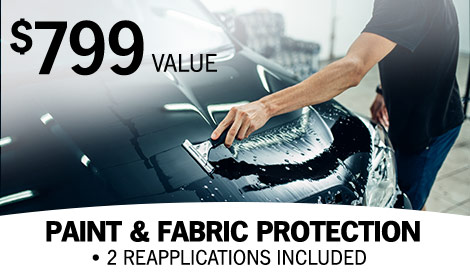paint and fabric protection