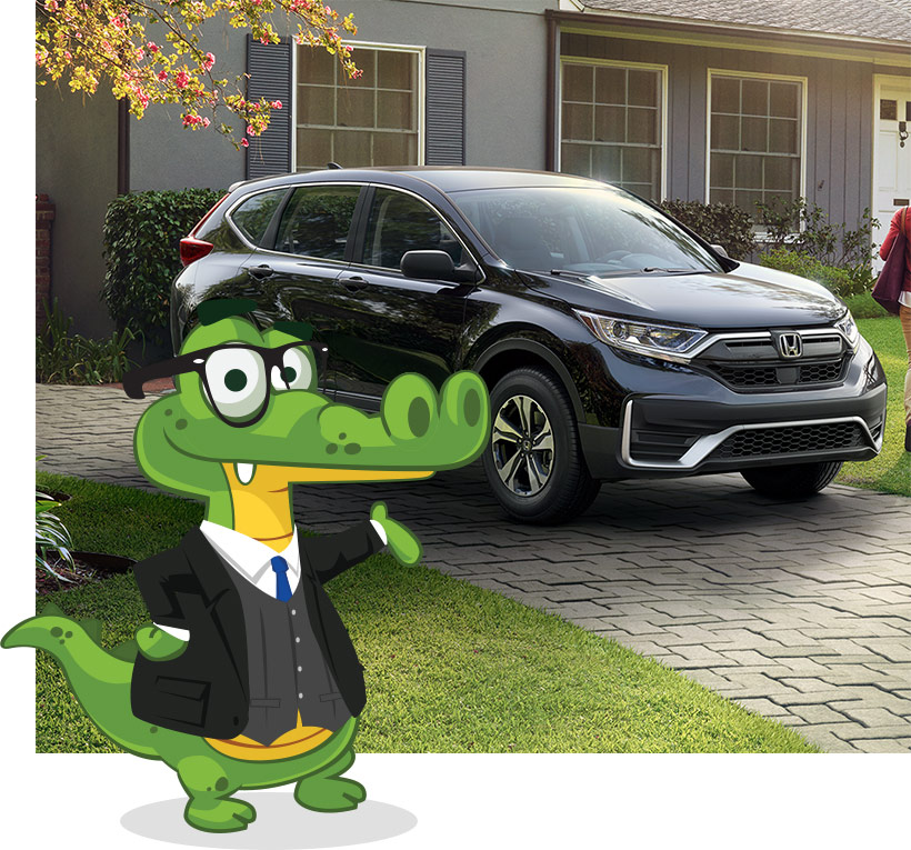 Gator with Honda outside of house
