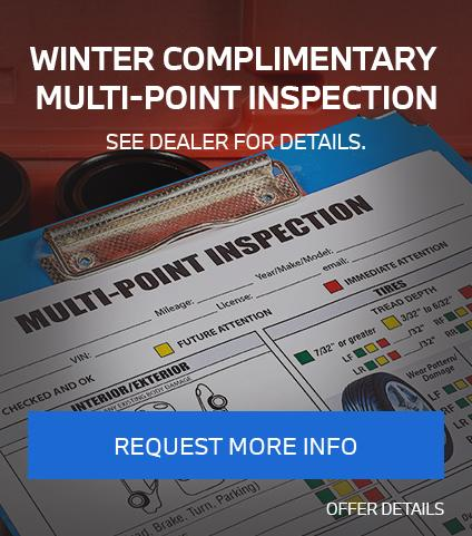 Winter Complimentary Multi-Point Inspection