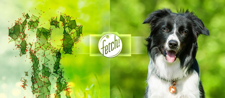 Fetch! (iOS) - Weekly Roundup: Apple's Date Glitch, Samsung ditched, and more