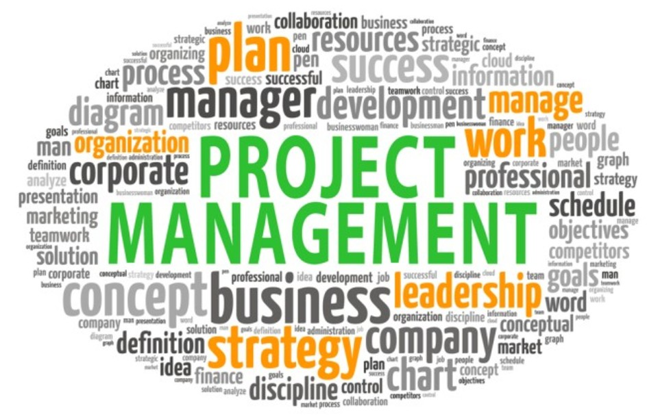 Elegant I Can Help You Setup A Project Management Office (PMO)