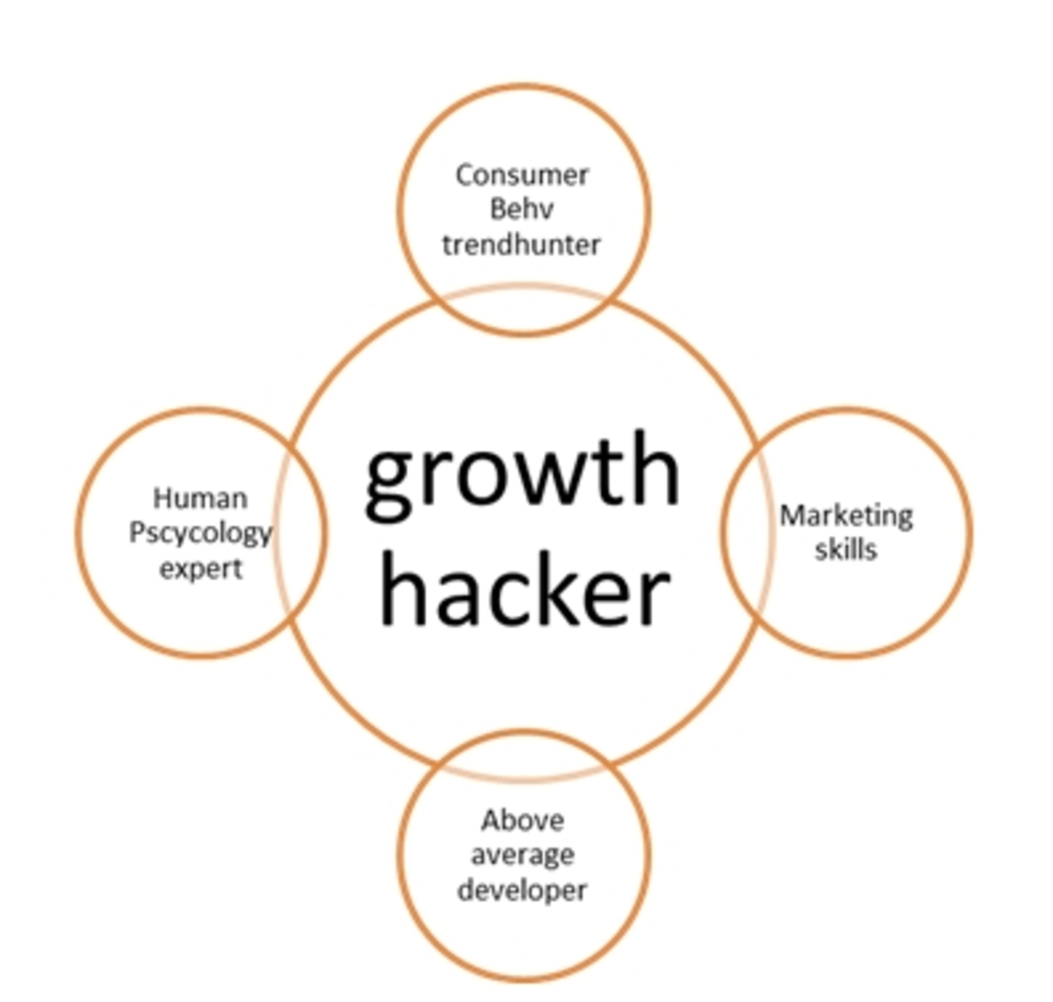 Image result for growth hacker marketing