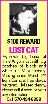 $100 REWARD LOST CAT 7-year-old big beautiful male Angora cat with big patches of black and white fur. Very friendly. Missing since March 2nd from Cambra. Has claws, neutered. Missed dearly, please call if seen or with any information. Call 570-494-8998