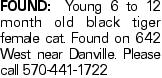 FOUND: Young 6 to 12 month old black tiger female cat. Found on 642 West near Danville. Please call 570-441-1722