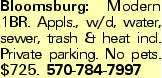 Bloomsburg: Modern 1BR. Appls., w/d, water, sewer, trash & heat incl. Private parking. No pets. $725. 570-784-7997
