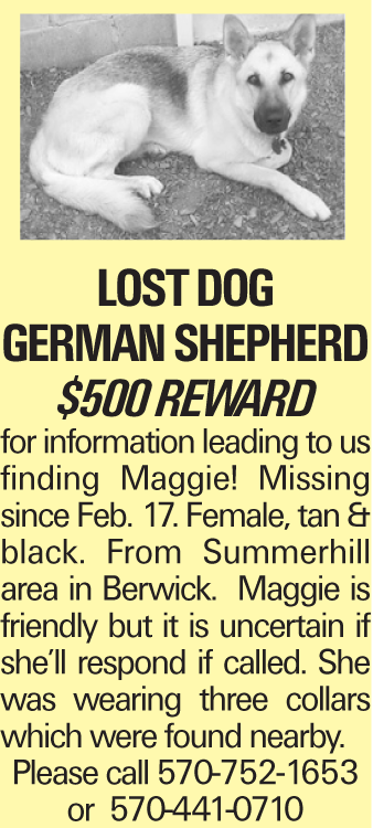 lost dog German Shepherd $500 Reward for information leading to us finding Maggie! Missing since Feb. 17. Female, tan & black. From Summerhill area in Berwick. Maggie is friendly but it is uncertain if she'll respond if called. She was wearing three collars which were found nearby. Please call 570-752-1653 or 570-441-0710