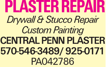 plaster repair Drywall & Stucco Repair Custom Painting Central Penn Plaster 570-546-3489/ 925-0171 PA042786