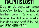 Ralph is Lost! Dog in Jerseytown area black/white lab mix had a leather collar, 12 yrs. old. Named Ralph. He barks a lot but does not bite! If found, call 570-458-4704