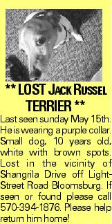 ** LOST Jack Russel TERRIER ** Last seen sunday May 15th. He is wearing a purple collar. Small dog, 10 years old, white with brown spots. Lost in the vicinity of Shangrila Drive off LightStreet Road Bloomsburg. If seen or found please call 570-394-1876. Please help return him home!