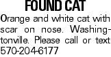 Found Cat Orange and white cat with scar on nose. Washingtonville. Please call or text 570-204-6177