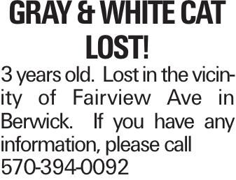 Gray & White Cat Lost! 3 years old. Lost in the vicinity of Fairview Ave in Berwick. If you have any information, please call 570-394-0092