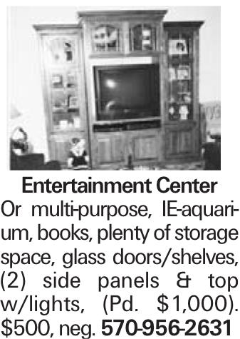 Entertainment Center Or multi-purpose, IE-aquarium, books, plenty of storage space, glass doors/shelves, (2) side panels & top w/lights, (Pd. $1,000). $500, neg. 570-956-2631