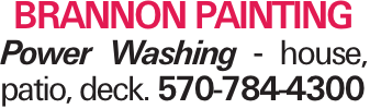 Brannon Painting Power Washing - house, patio, deck. 570-784-4300