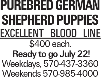 Purebred German Shepherd Puppies Excellent blood line $400 each. Ready to go July 22! Weekdays, 570-437-3360 Weekends 570-985-4000