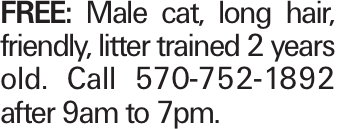 Free: Male cat, long hair, friendly, litter trained 2 years old. Call 570-752-1892 after 9am to 7pm.