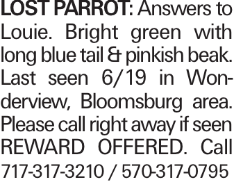 LOST PARROT: Answers to Louie. Bright green with long blue tail & pinkish beak. Last seen 6/19 in Wonderview, Bloomsburg area. Please call right away if seen REWARD OFFERED. Call 717-317-3210 / 570-317-0795