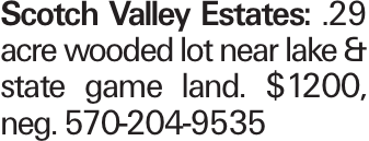 Scotch Valley Estates: .29 acre wooded lot near lake & state game land. $1200, neg. 570-204-9535