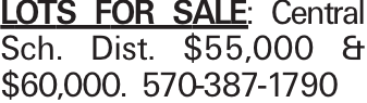Lots for Sale: Central Sch. Dist. $55,000 & $60,000. 570-387-1790