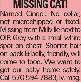 Missing Cat! Named Cinder. No collar, not microchipped or fixed. Missing from Millville next to OIP. Grey with a small white spot on chest. Shorter hair on back & belly, friendly, will come to food. We want to get our baby home safely. Call 570-594-7883, lv. msg.