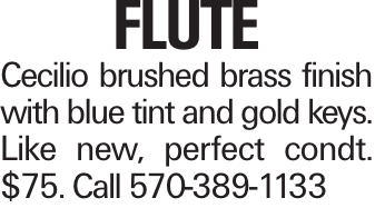 Flute Cecilio brushed brass finish with blue tint and gold keys. Like new, perfect condt. $75. Call 570-389-1133